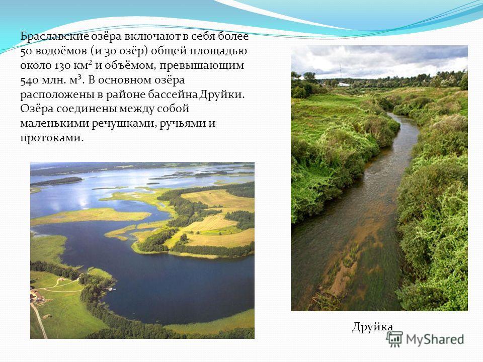 Браславские озёра включают в себя более 50 водоёмов (и 30 озёр) общей площадью около 130 км² и объёмом, превышающим 540 млн. м³. В основном озёра расположены в районе бассейна Друйки. Озёра соединены между собой маленькими речушками, ручьями и проток