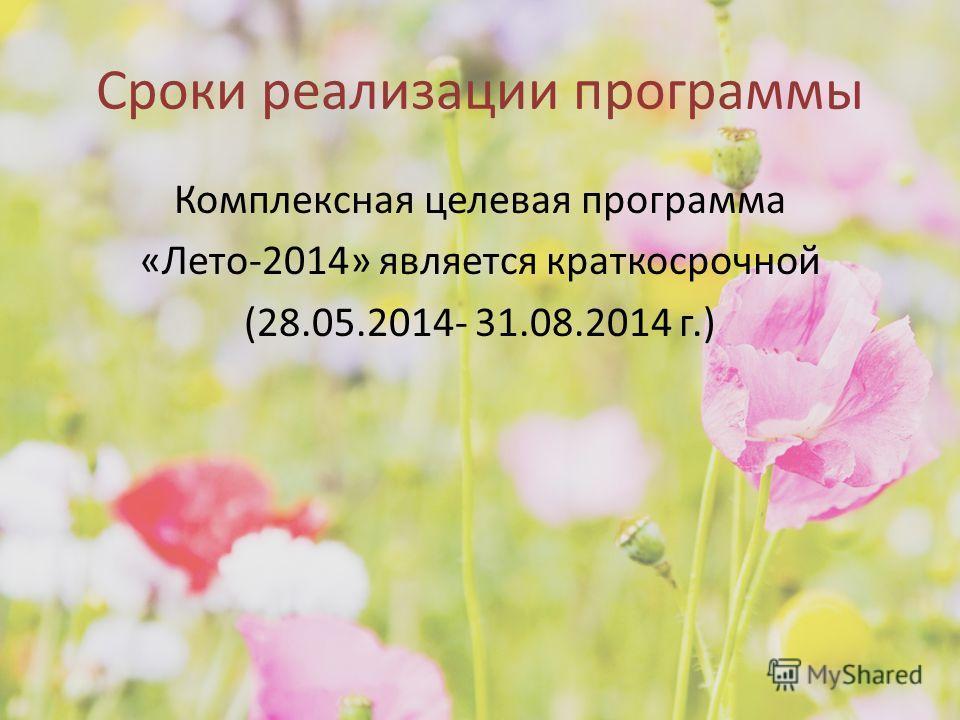 Сроки реализации программы Комплексная целевая программа «Лето-2014» является краткосрочной (28.05.2014- 31.08.2014 г.)