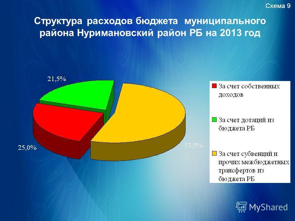 Схема 9 Структура расходов бюджета муниципального района Нуримановский район РБ на 2013 год