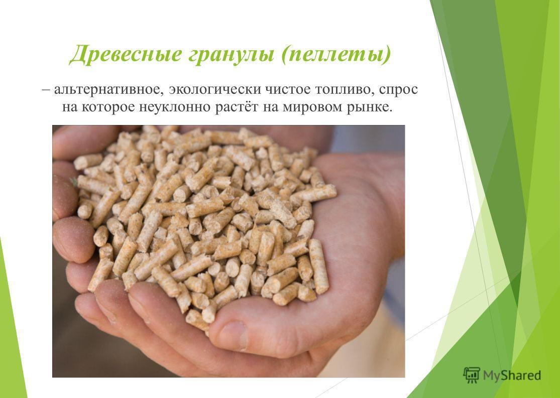 Древесные гранулы (пеллеты) – альтернативное, экологически чистое топливо, спрос на которое неуклонно растёт на мировом рынке.