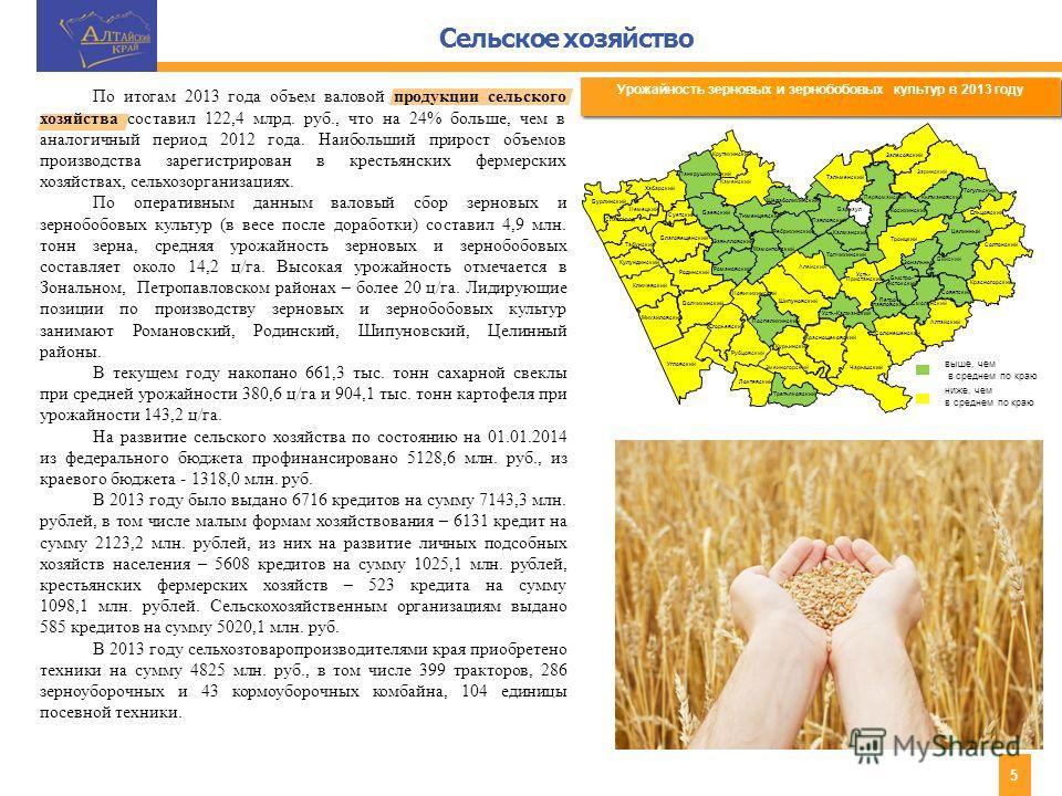 Сельское хозяйство 5 Урожайность зерновых и зернобобовых культур в 2013 году выше, чем в среднем по краю ниже, чем в среднем по краю По итогам 2013 года объем валовой продукции сельского хозяйства составил 122,4 млрд. руб., что на 24% больше, чем в а