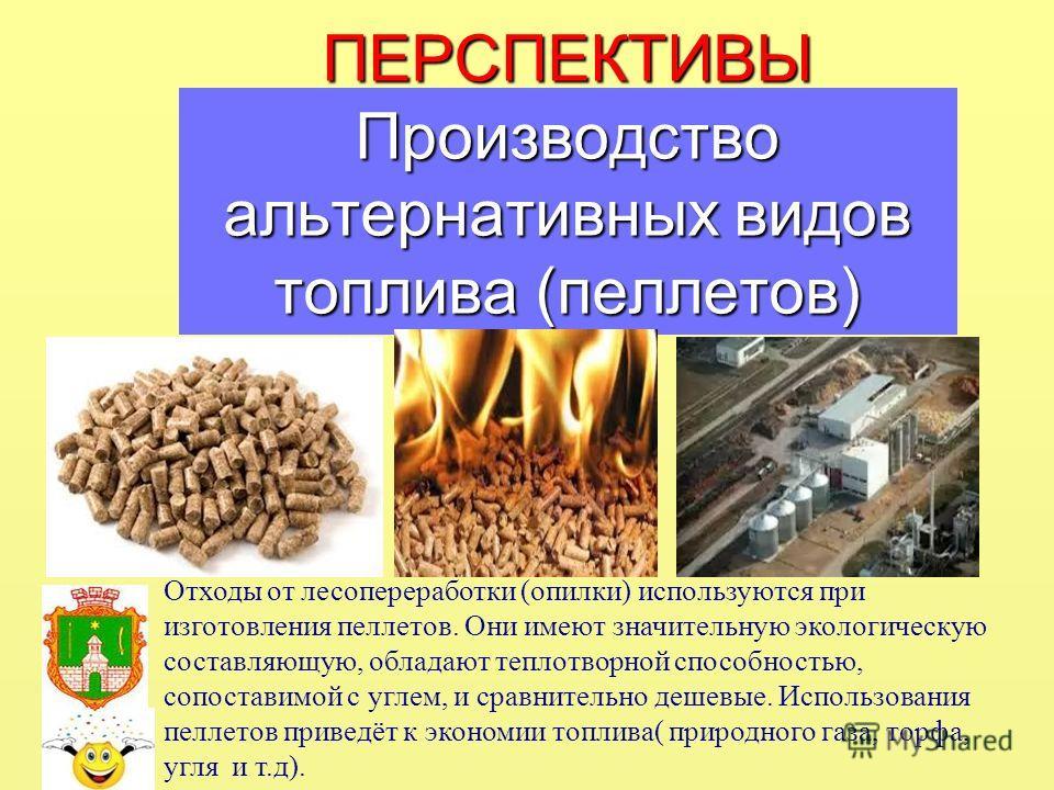 ПЕРСПЕКТИВЫ Производство альтернативных видов топлива (пеллетов) Отходы от лесопереработки (опилки) используются при изготовления пеллетов. Они имеют значительную экологическую составляющую, обладают теплотворной способностью, сопоставимой с углем, и