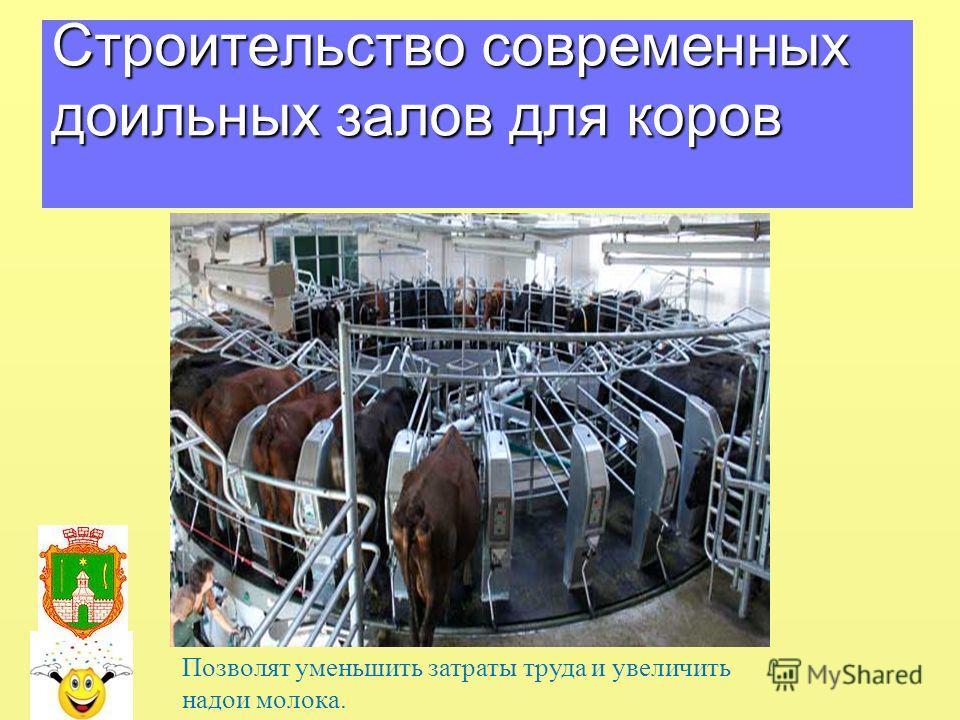 Строительство современных доильных залов для коров Позволят уменьшить затраты труда и увеличить надои молока.