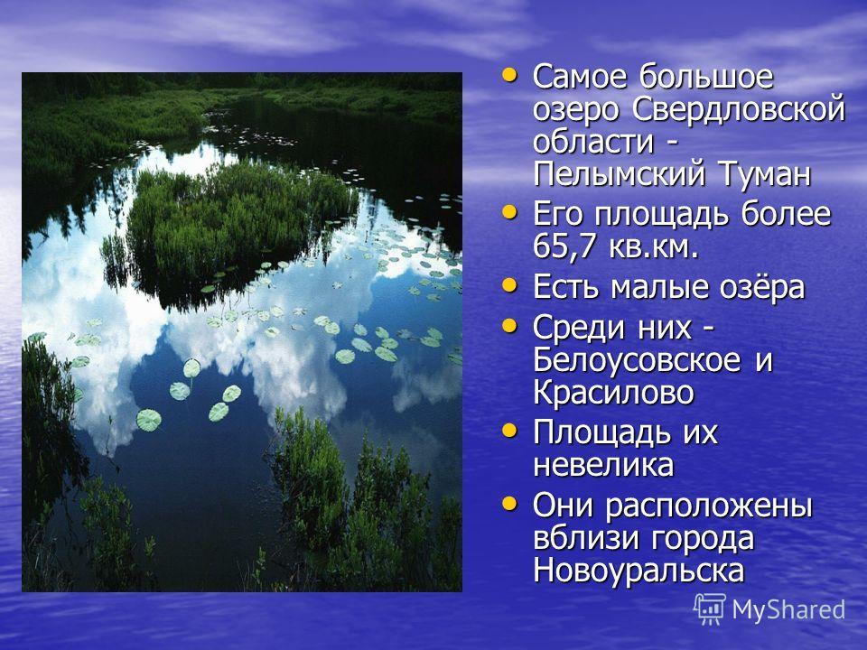 Самое большое озеро Свердловской области - Пелымский Туман Самое большое озеро Свердловской области - Пелымский Туман Его площадь более 65,7 кв.км. Его площадь более 65,7 кв.км. Есть малые озёра Есть малые озёра Среди них - Белоусовское и Красилово С