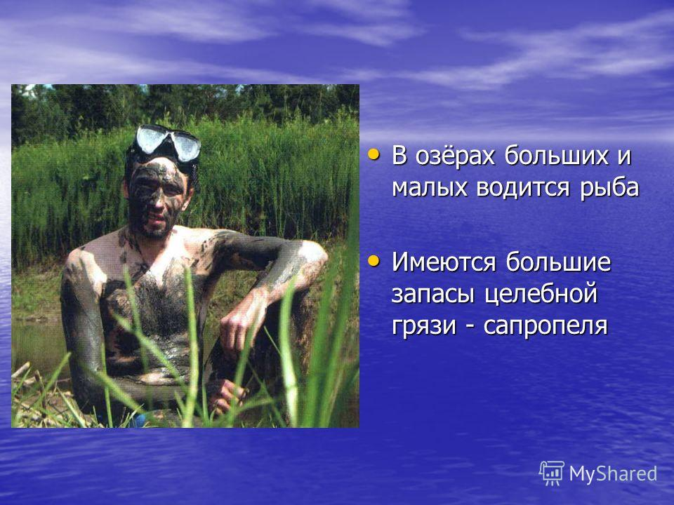 В озёрах больших и малых водится рыба В озёрах больших и малых водится рыба Имеются большие запасы целебной грязи - сапропеля Имеются большие запасы целебной грязи - сапропеля