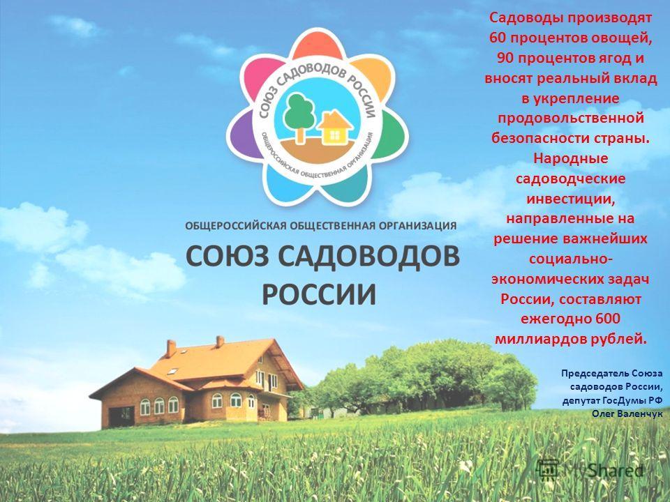 Садоводы производят 60 процентов овощей, 90 процентов ягод и вносят реальный вклад в укрепление продовольственной безопасности страны. Народные садоводческие инвестиции, направленные на решение важнейших социально- экономических задач России, составл