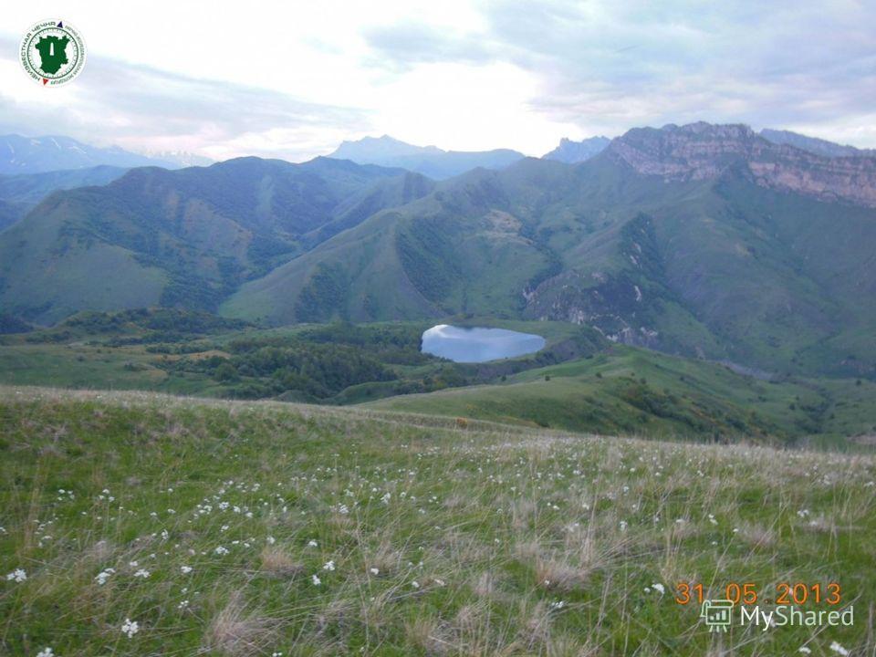 Галанчожское озеро находится в горной Чечне, за Скалистым хребтом, в верховьях бассейна реки Гехи. Расположено на правом склоне долины реки Осу-хи, на высоте 100 метров над уровнем реки и 1533 метра над уровнем океана. Раскинулось это чудесное озеро