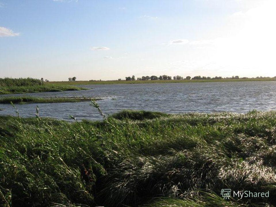 Озеро Майорское расположено среди грядовых песков в 22 километрах от железнодорожной станции Наурская, в одном километре от хутора Майорского. Котловина озера имеет вытянутую форму. С запада на восток протянулось на 700 метров, с севера на юг на 350
