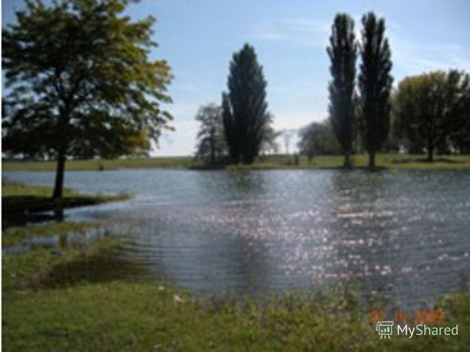 Джалкинское озеро расположено в 6 километрах к востоку от города Гудермеса, в старице реки Сунжи. Имеет вытянутую форму. Длина озера 750800 метров, ширина 100 метров, глубина 23 метра. Площадь озера 78 гектаров. В верхней части старица перегорожена з