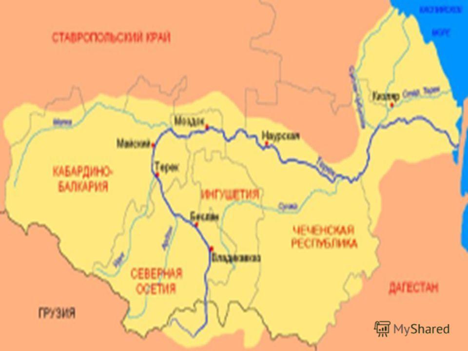 Наибольшие притоки реки Терек: река Сунжа длина 278 км, река Малка (Балык-Су) 210 км, река Урух 104 км, река Ардон 102 км. Бассейн реки Терек представляет собой хорошо развитую речную сеть. Большая часть притоков 6260 или 94,5 % имеют длину менее 10