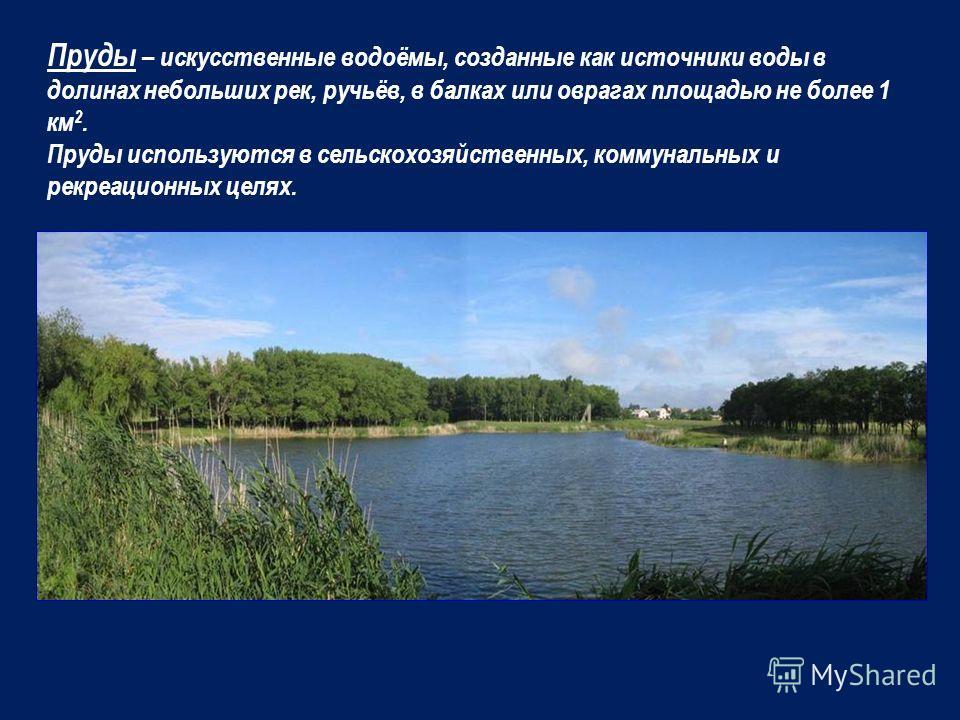 Большое значение в водном балансе области имеют пруды. На её территории насчитывается порядка 2400 прудов. Наибольшее их количество на севере и юго – западе( на 100 км 2 располагаются 3 – 4 пруда).