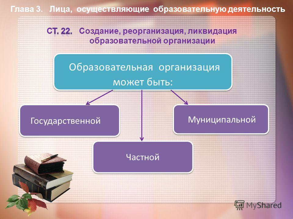 Образовательная организация может быть: Государственной Муниципальной Частной Частной Глава 3. Лица, осуществляющие образовательную деятельность