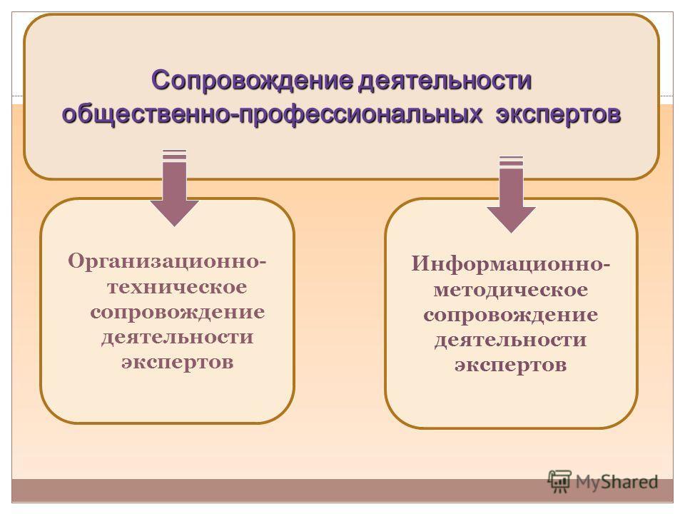 Организационно- техническое сопровождение деятельности экспертов Информационно- методическое сопровождение деятельности экспертов Сопровождение деятельности общественно-профессиональных экспертов