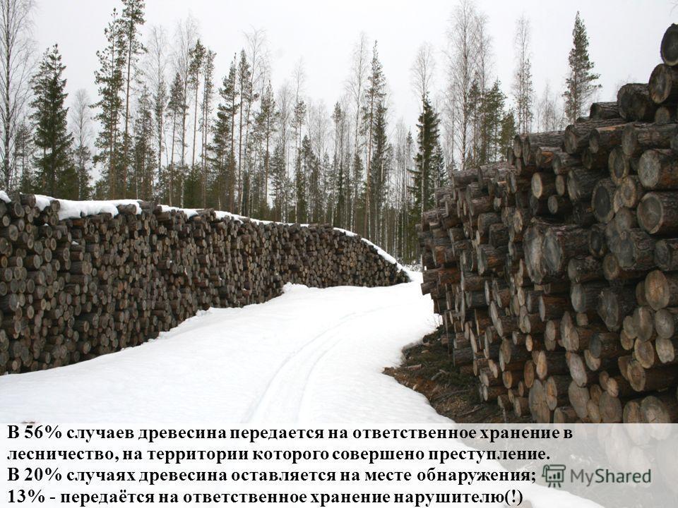 В 56% случаев древесина передается на ответственное хранение в лесничество, на территории которого совершено преступление. В 20% случаях древесина оставляется на месте обнаружения; 13% - передаётся на ответственное хранение нарушителю(!)