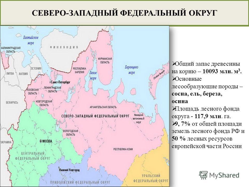 СЕВЕРО-ЗАПАДНЫЙ ФЕДЕРАЛЬНЫЙ ОКРУГ Общий запас древесины на корню – 10093 млн. м 3. Основные лесообразующие породы – сосна, ель, береза, осина Площадь лесного фонда округа - 117,9 млн. га. 9, 7% от общей площади земель лесного фонда РФ и 50 % лесных р