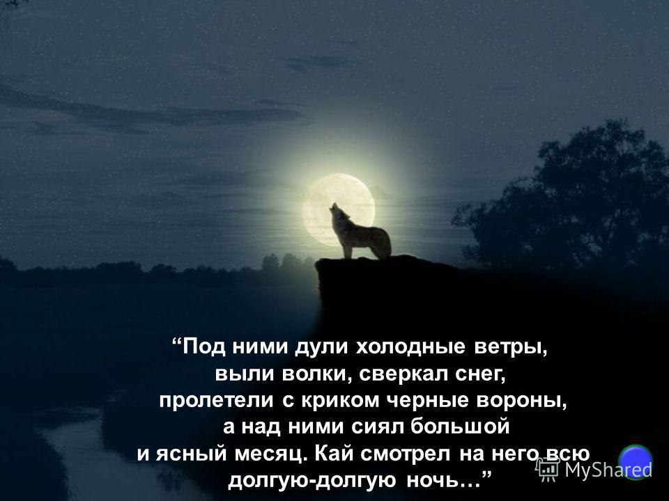Под ними дули холодные ветры, выли волки, сверкал снег, пролетели с криком черные вороны, а над ними сиял большой и ясный месяц. Кай смотрел на него всю долгую-долгую ночь…