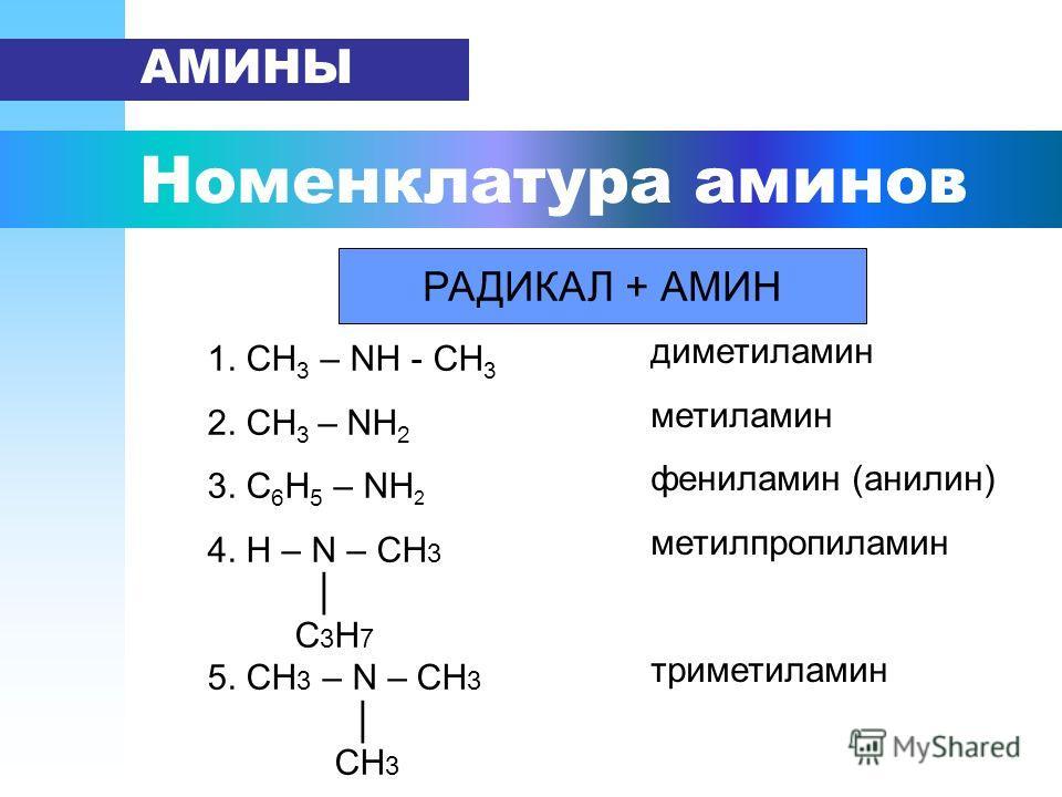 Номенклатура аминов АМИНЫ РАДИКАЛ + АМИН 1. СН 3 – NН - СН 3 2. СН 3 – NН 2 3. С 6 Н 5 – NН 2 4. H – N – CH 3 С 3 Н 7 5. CH 3 – N – CH 3 СН 3 диметиламин метиламин фениламин (анилин) метилпропиламин триметиламин