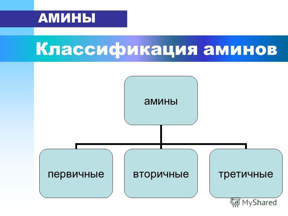 Классификация аминов АМИНЫ амины первичныевторичныетретичные