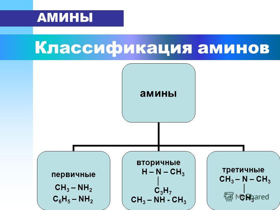 Классификация аминов АМИНЫ амины первичные СН3 – NН2 С 6 Н 5 – NН 2 вторичные H – N – CH3 С 3 Н 7 СН 3 – NН - СН 3 третичные CH3 – N – CH3 СН 3