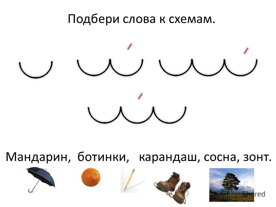 Подбери слова к схемам. Мандарин, ботинки, карандаш, сосна, зонт.
