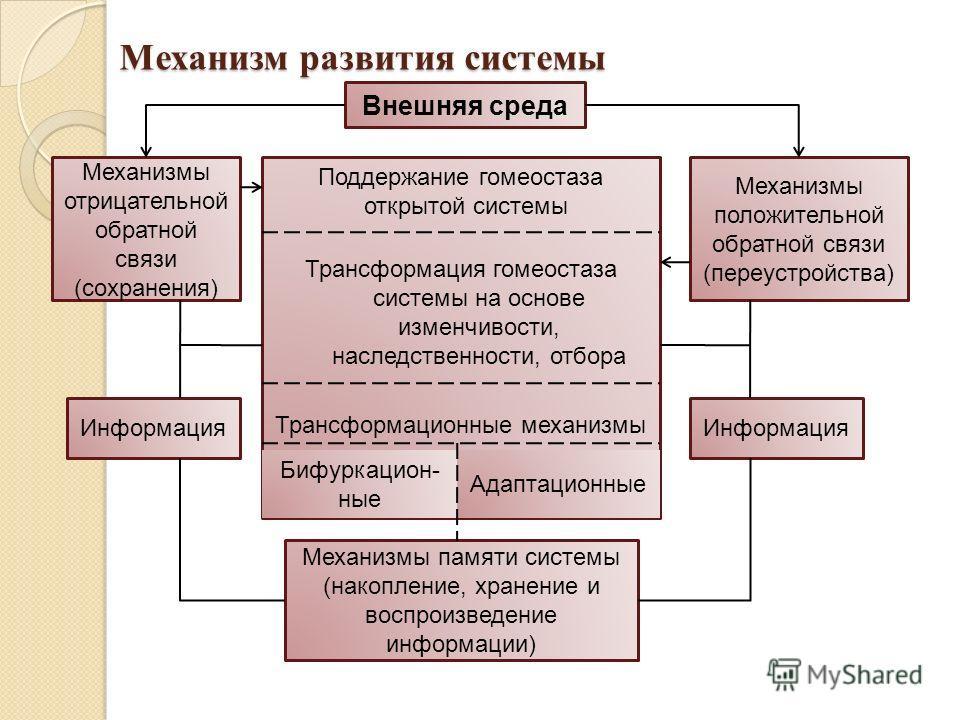 Механизм развития системы Поддержание гомеостаза открытой системы Трансформация гомеостаза системы на основе изменчивости, наследственности, отбора Трансформационные механизмы Внешняя среда Информация Механизмы отрицательной обратной связи (сохранени