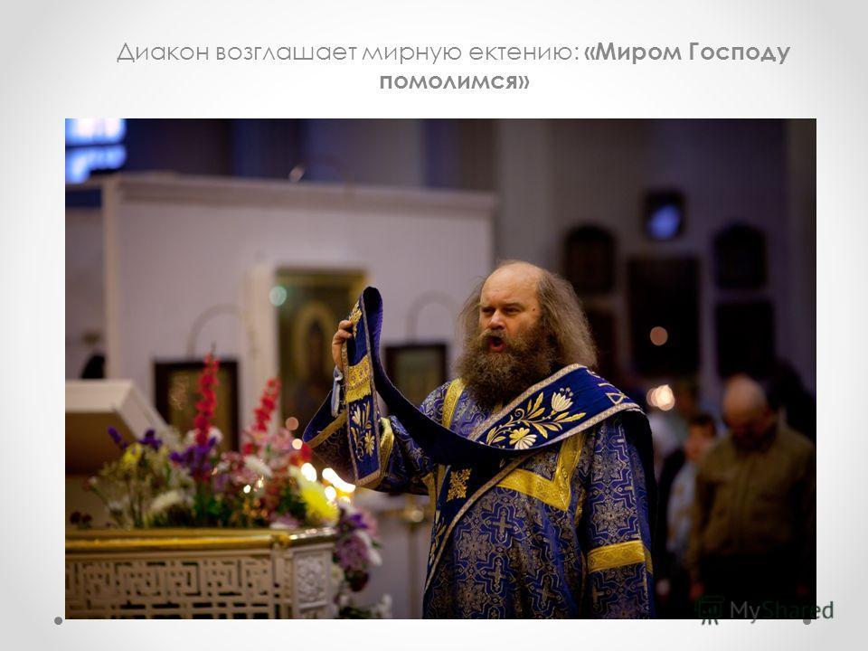 Диакон возглашает мирную ектению: «Миром Господу помолимся»