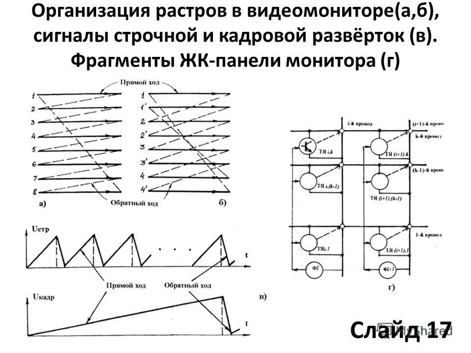 Организация растров в видеомониторе(а,б), сигналы строчной и кадровой развёрток (в). Фрагменты ЖК-панели монитора (г) Слайд 17