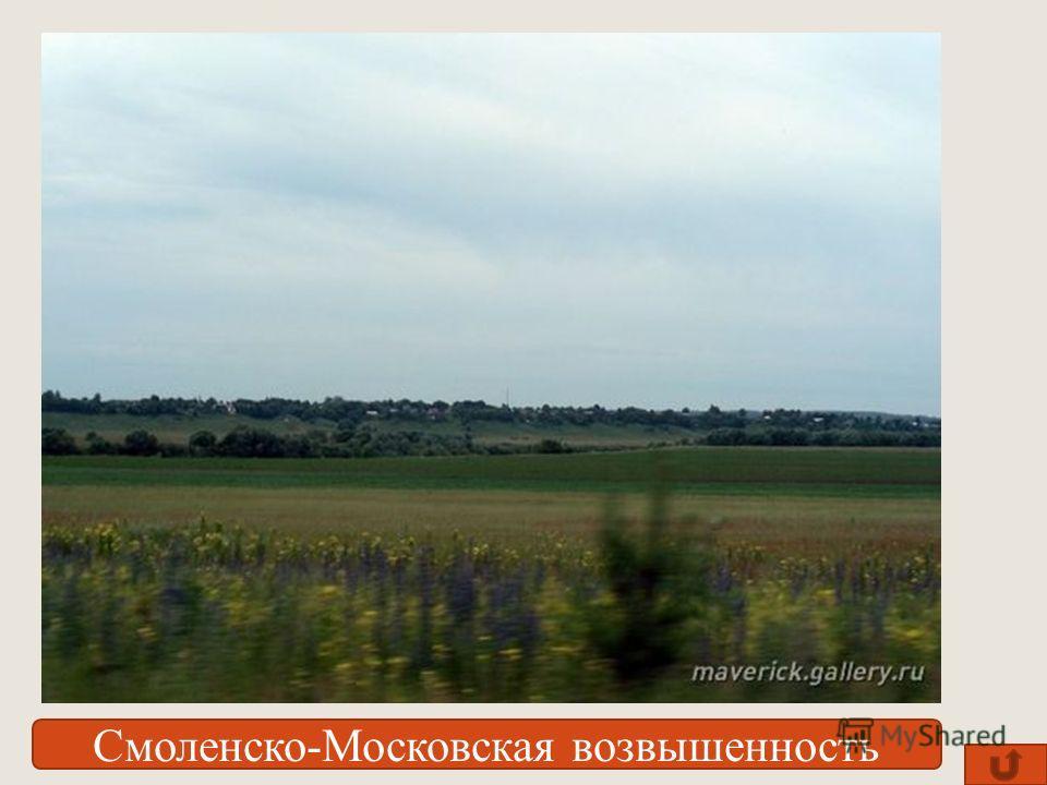 Смоленско-Московская возвышенность