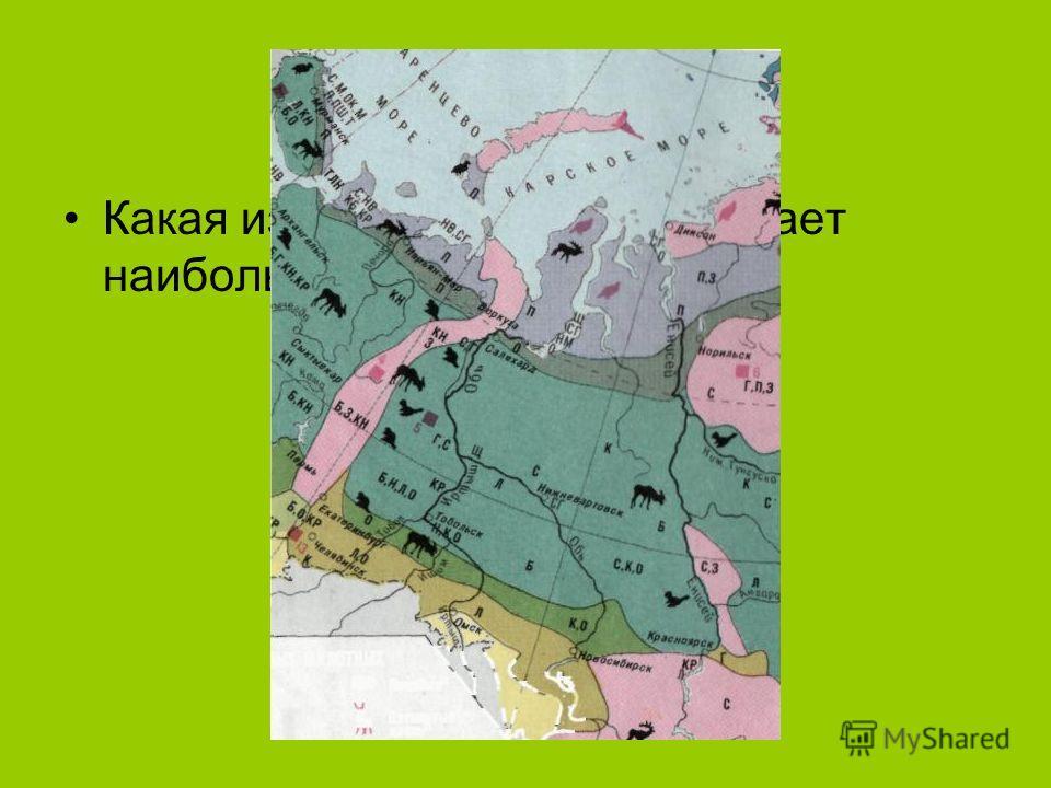 Какая из природных зон занимает наибольшую площадь?