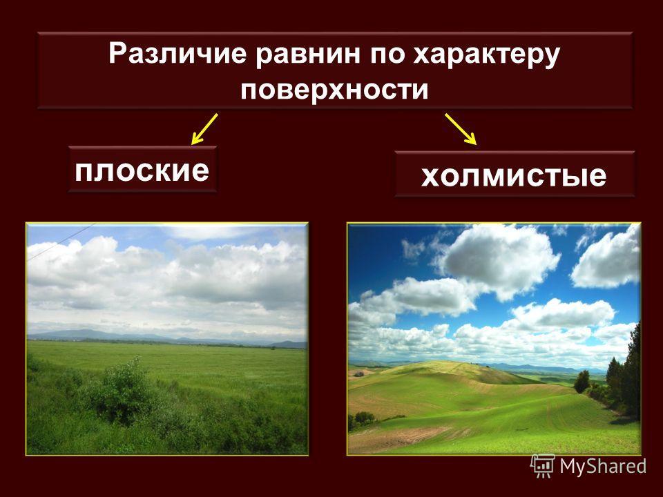 Различие равнин по характеру поверхности плоские холмистые