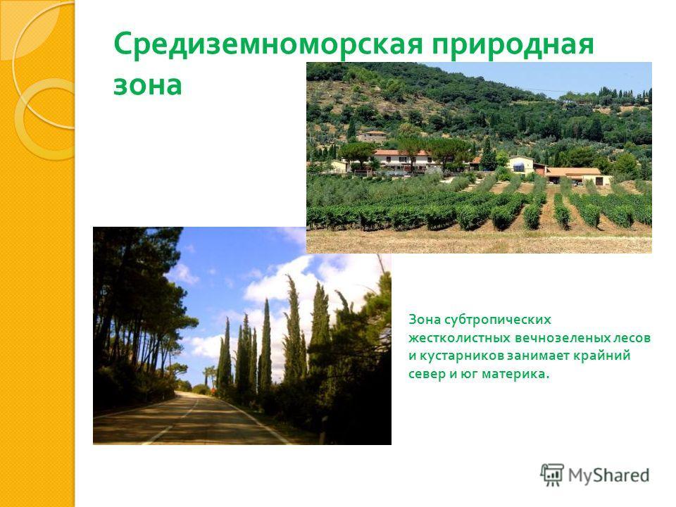 Средиземноморская природная зона Зона субтропических жестколистных вечнозеленых лесов и кустарников занимает крайний север и юг материка.