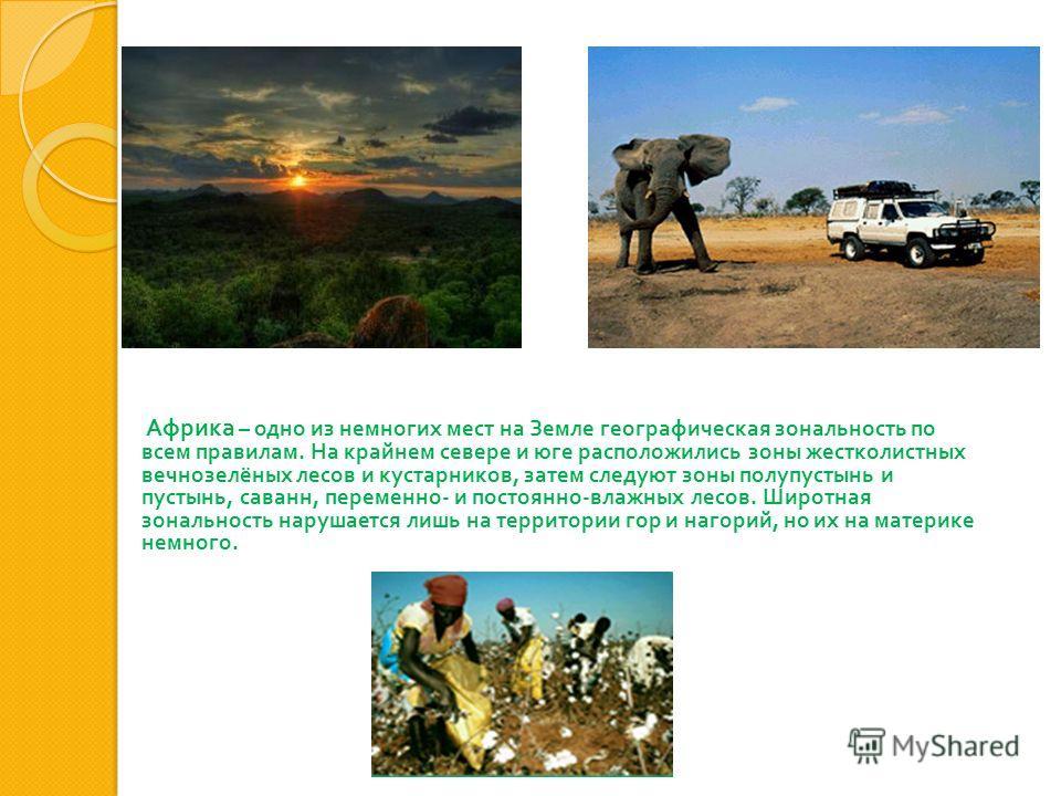 Африка – одно из немногих мест на Земле географическая зональность по всем правилам. На крайнем севере и юге расположились зоны жестколистных вечнозелёных лесов и кустарников, затем следуют зоны полупустынь и пустынь, саванн, переменно - и постоянно