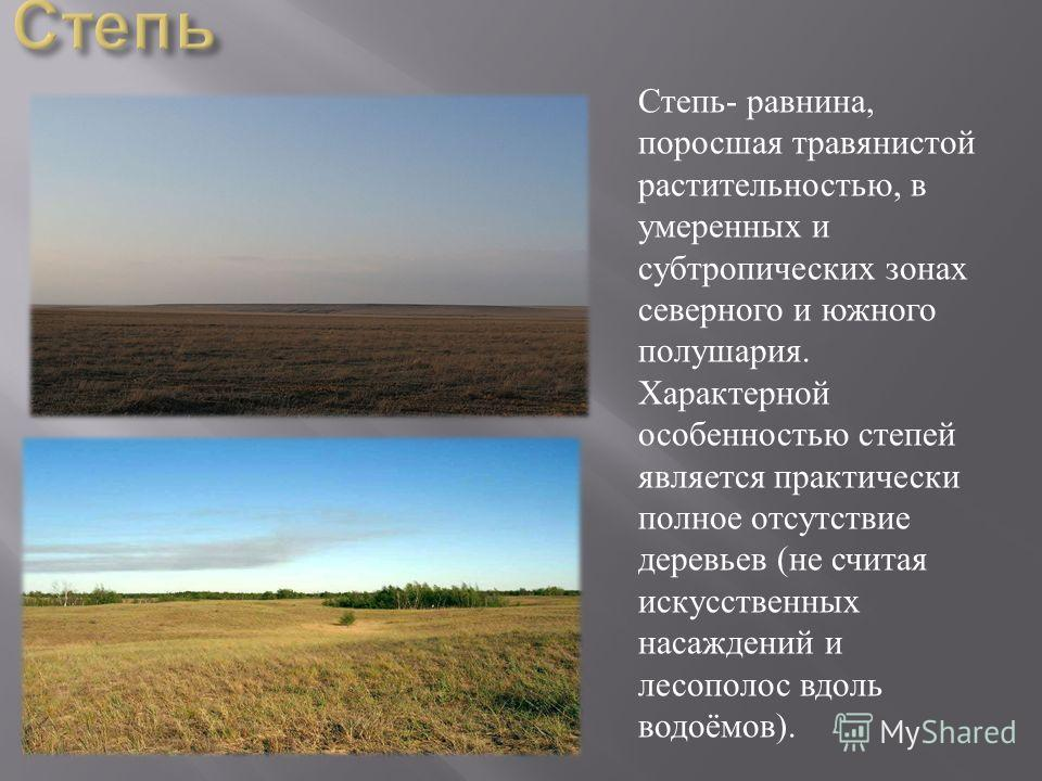 Степь - равнина, поросшая травянистой растительностью, в умеренных и субтропических зонах северного и южного полушария. Характерной особенностью степей является практически полное отсутствие деревьев ( не считая искусственных насаждений и лесополос в
