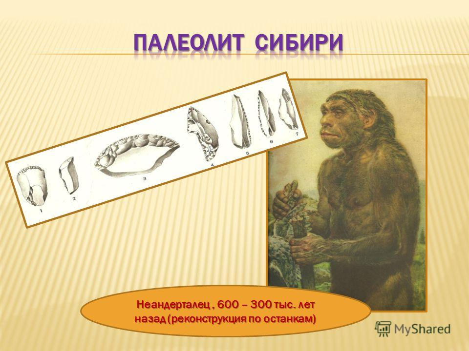 Неандерталец, 600 – 300 тыс. лет назад (реконструкция по останкам)