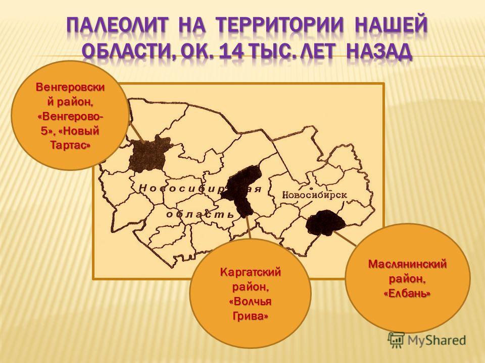Венгеровски й район, «Венгерово- 5», «Новый Тартас» Каргатский район, «Волчья Грива» Маслянинский район, «Елбань»