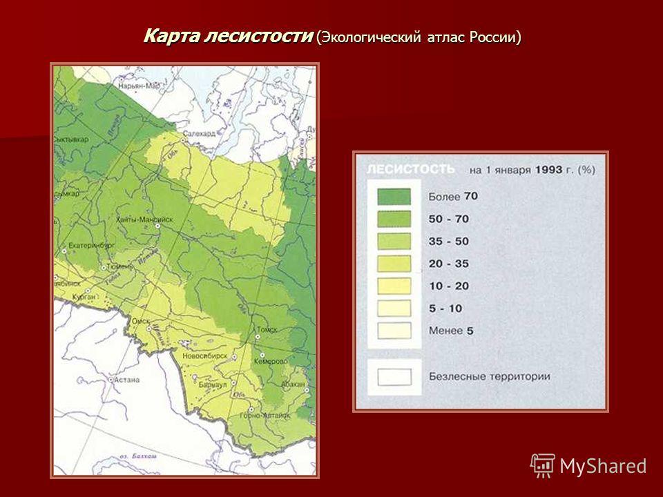 Карта лесистости (Экологический атлас России)