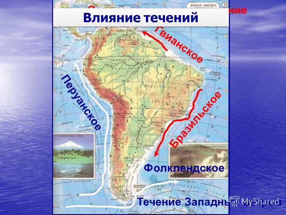 Гвианское Бразильское Перуанское Фолклендское Течение Западных ветров Северное пассатное течение Влияние течений