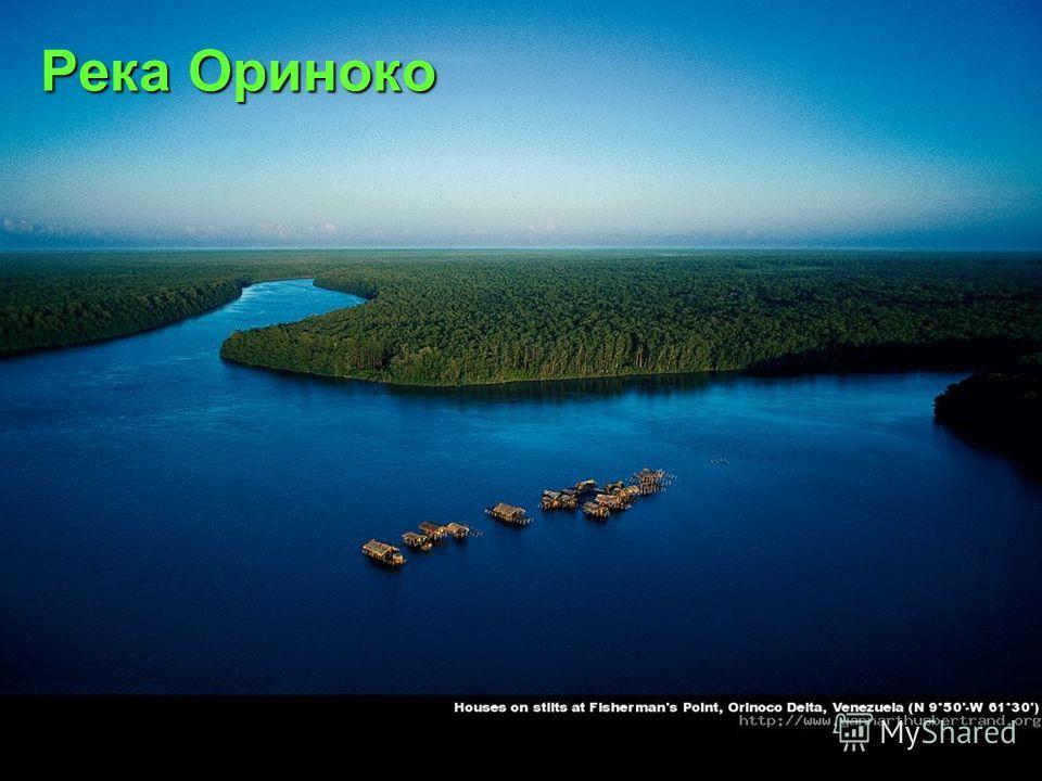 Река Ориноко Река Ориноко