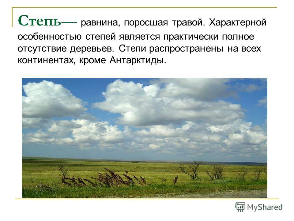 Степь равнина, поросшая травой. Характерной особенностью степей является практически полное отсутствие деревьев. Степи распространены на всех континентах, кроме Антарктиды.