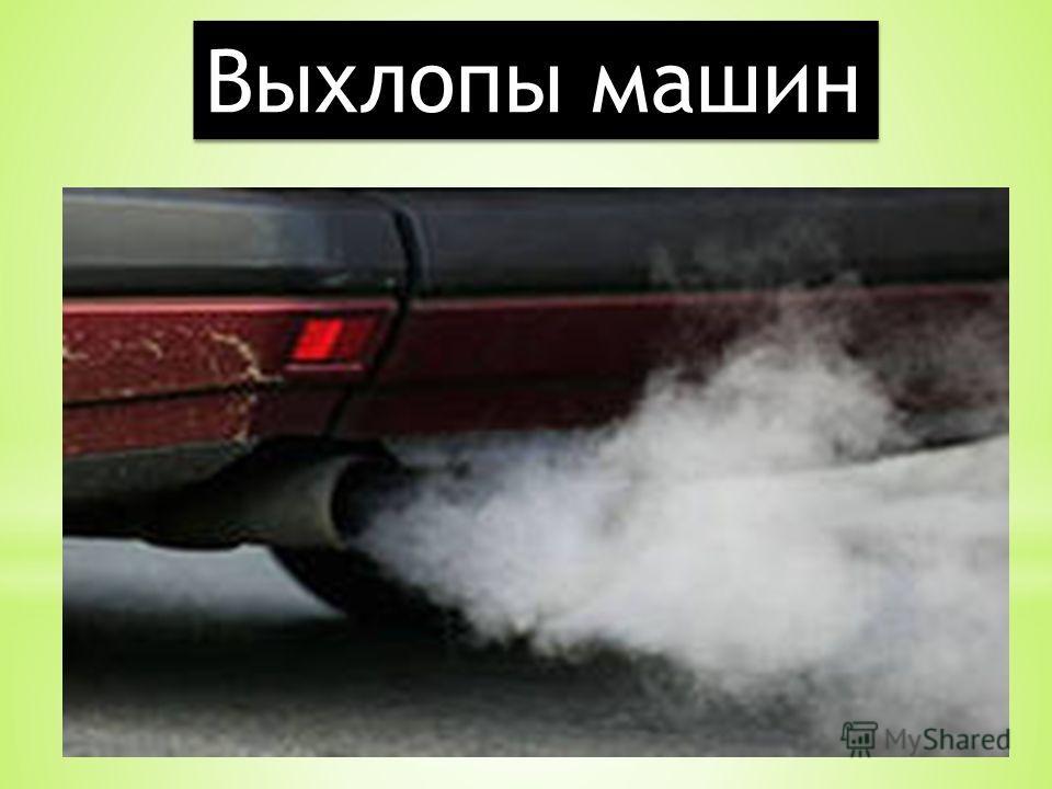 Выхлопы машин