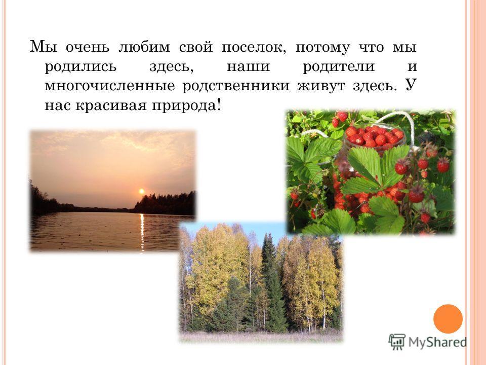 Мы очень любим свой поселок, потому что мы родились здесь, наши родители и многочисленные родственники живут здесь. У нас красивая природа!