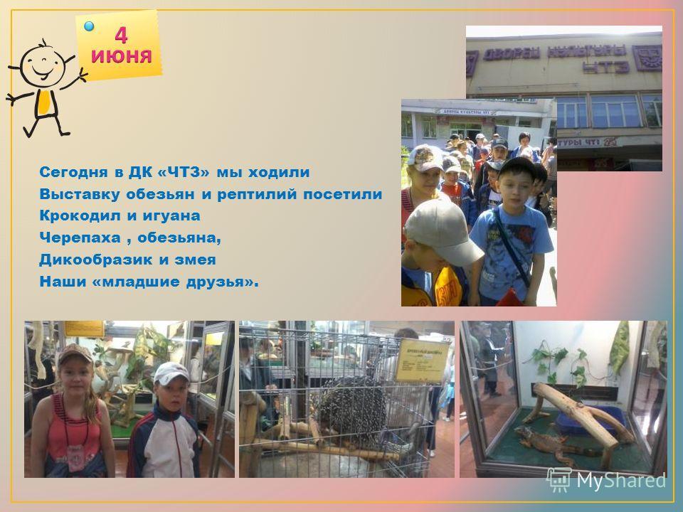 Сегодня в ДК «ЧТЗ» мы ходили Выставку обезьян и рептилий посетили Крокодил и игуана Черепаха, обезьяна, Дикообразик и змея Наши «младшие друзья».