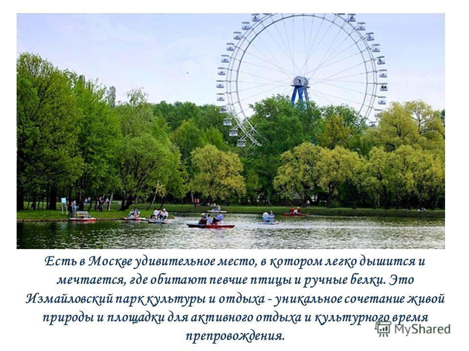 Есть в Москве удивительное место, в котором легко дышится и мечтается, где обитают певчие птицы и ручные белки. Это Измайловский парк культуры и отдыха - уникальное сочетание живой природы и площадки для активного отдыха и культурного время препровож
