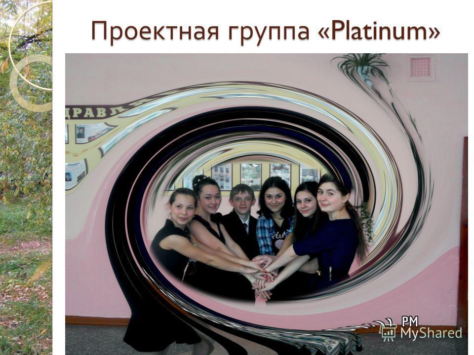 Проектная группа «Platinum»