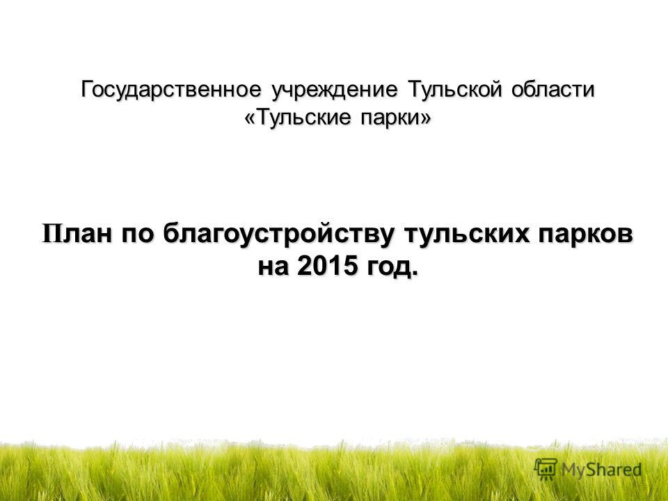 П лан по благоустройству тульских парков на 2015 год. Государственное учреждение Тульской области «Тульские парки»