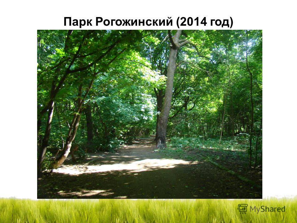 Парк Рогожинский (2014 год)