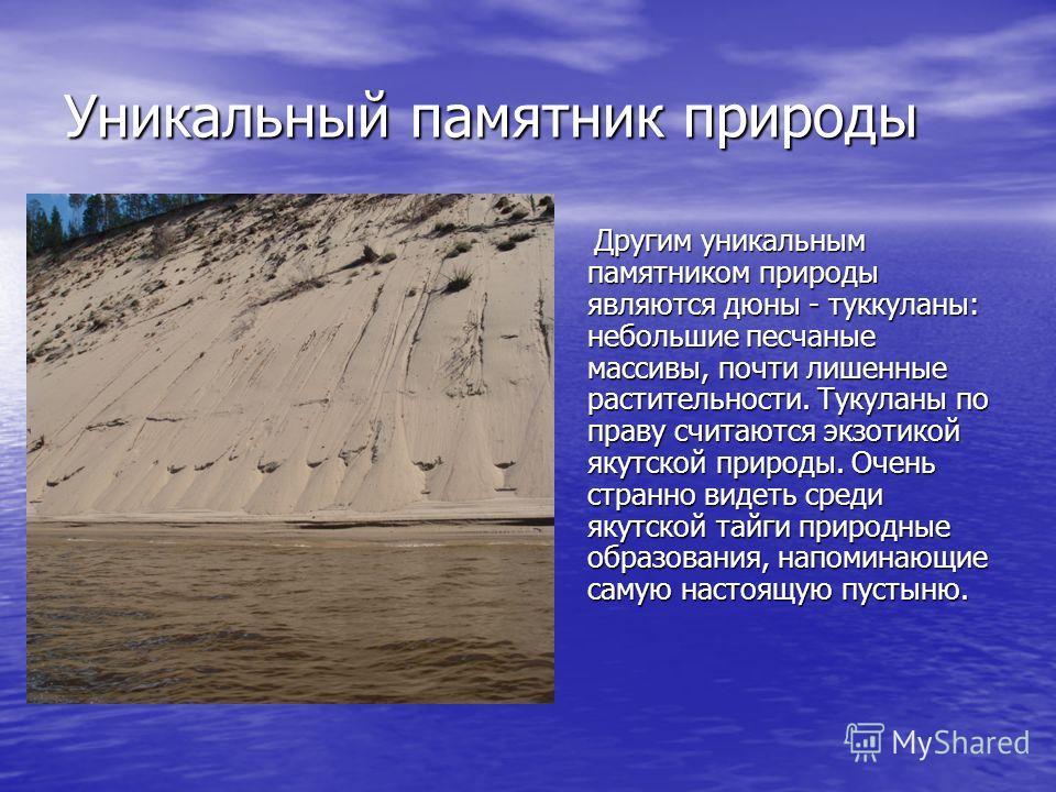 Уникальный памятник природы Другим уникальным памятником природы являются дюны - туккуланы: небольшие песчаные массивы, почти лишенные растительности. Тукуланы по праву считаются экзотикой якутской природы. Очень странно видеть среди якутской тайги п