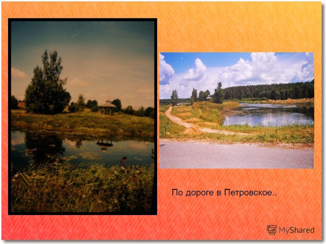 По дороге в Петровское..