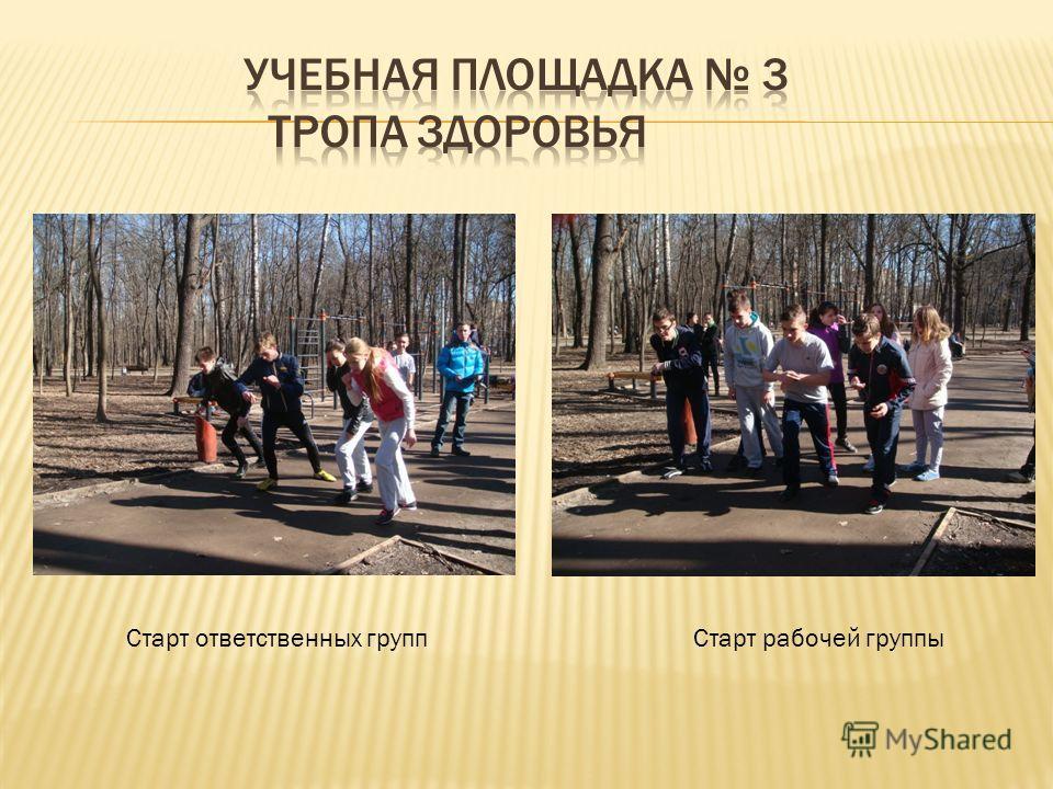 Старт ответственных групп Старт рабочей группы