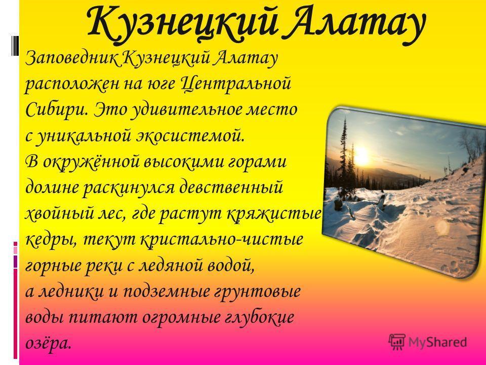 Кузнецкий Алатау Заповедник Кузнецкий Алатау расположен на юге Центральной Сибири. Это удивительное место с уникальной экосистемой. В окружённой высокими горами долине раскинулся девственный хвойный лес, где растут кряжистые кедры, текут кристально-ч